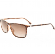 BOSS HUGO BOSS 0665 Sunglasses Brown